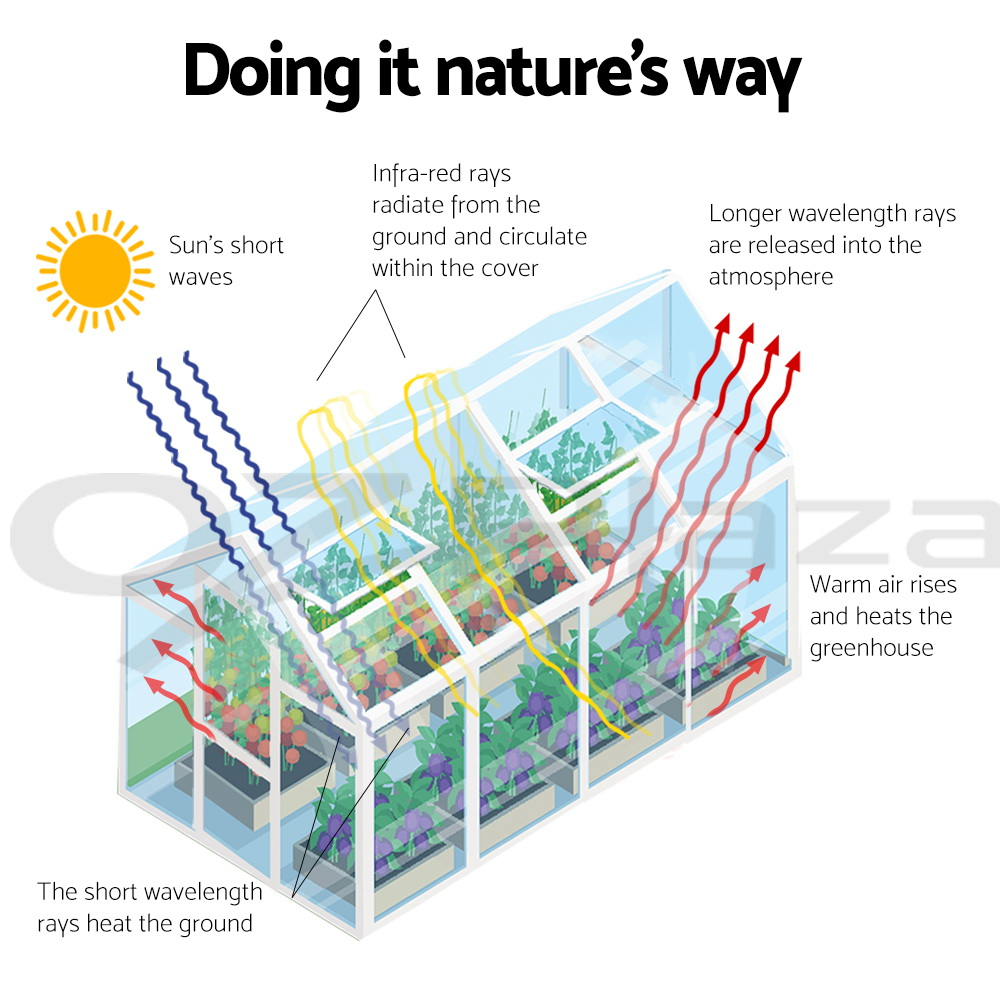 Greenfingers-Hobby-Aluminium-Greenhouse-Polycarbonate-Garden-Storage-Green-House thumbnail 104